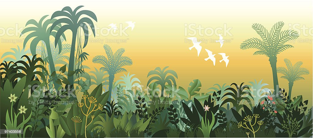 Landscape of Tropical Lush Jungle in Golden Light royalty-free stock vector art