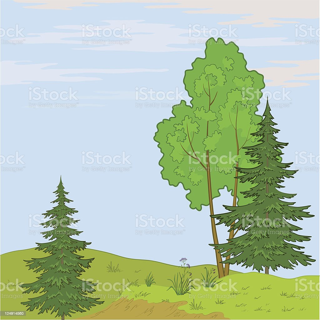Landscape. Trees on hill royalty-free stock vector art