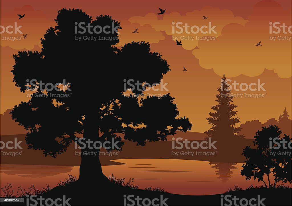 Landscape, trees, river and birds royalty-free stock vector art