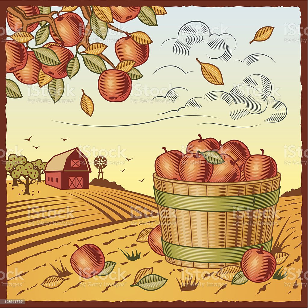 Landscape with apple harvest vector art illustration
