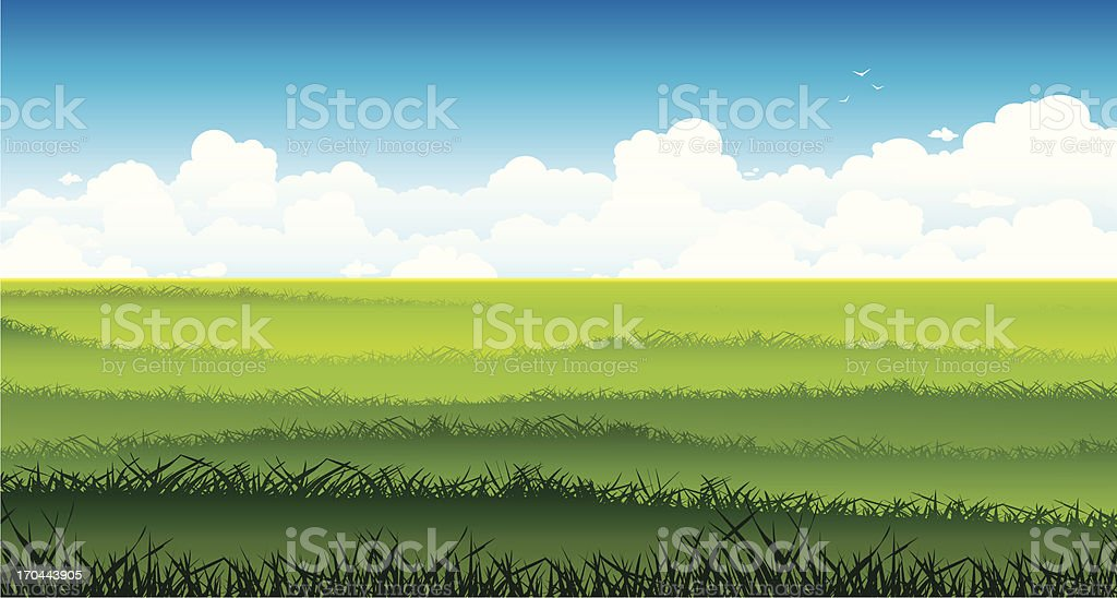 Landscape with green field and white clouds on a sky. vector art illustration