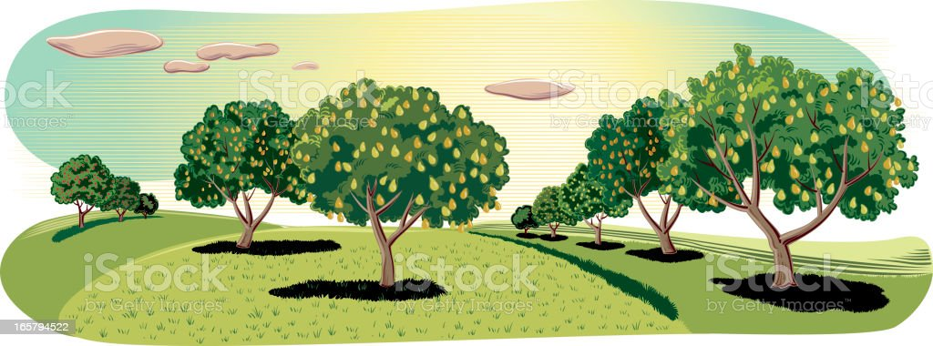 landscape with pear trees vector art illustration