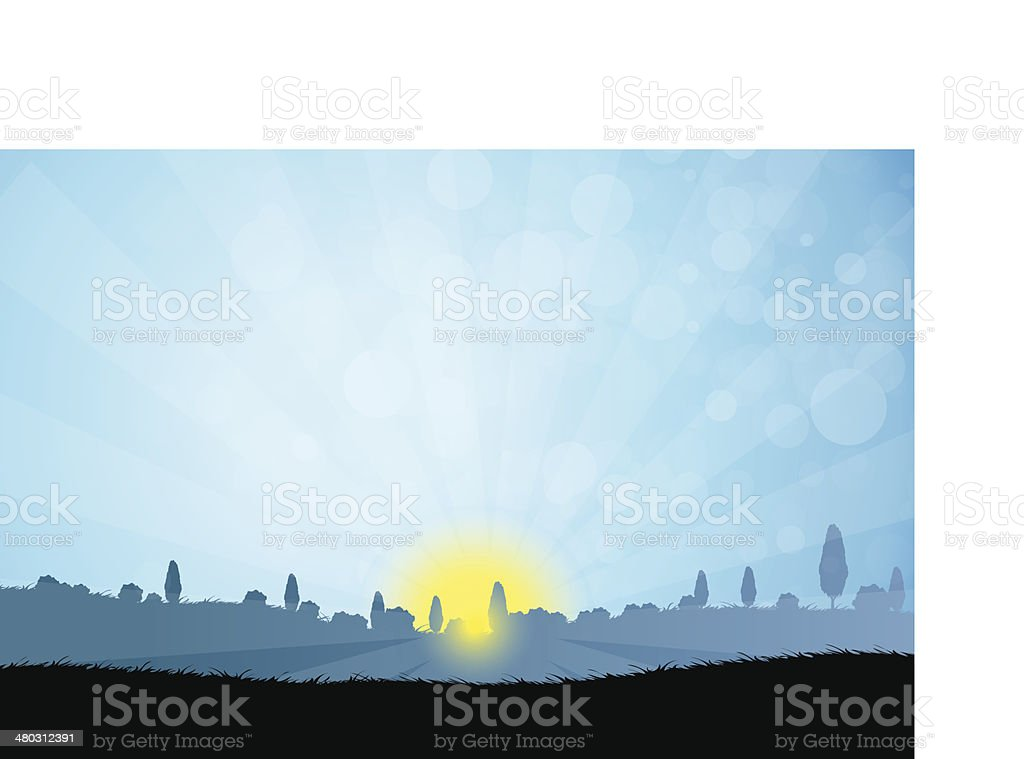 Landscape with  Tree Silhouettes vector art illustration