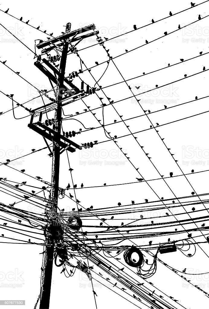 Large Group of Birds On A Tangle of Wires vector art illustration