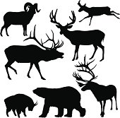 Large Mammal Silhouettes