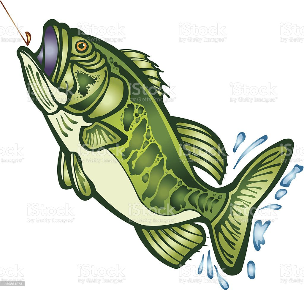 Large Mouth Bass C vector art illustration