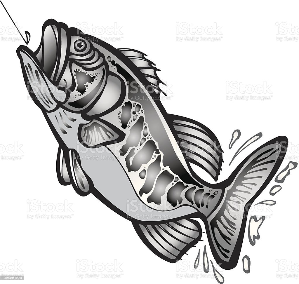 Large Mouth Bass vector art illustration
