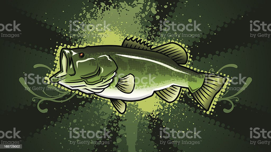 Largemouth Bass Design vector art illustration