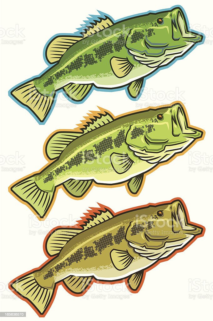 Largemouth Bass Icons - Various Color series vector art illustration