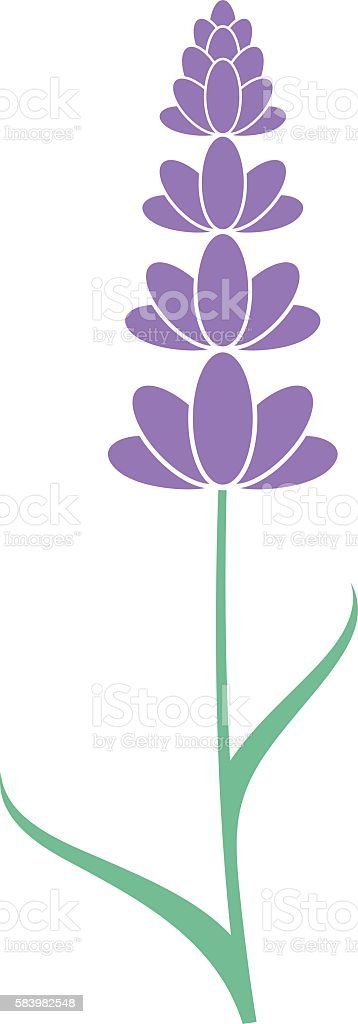 silhouette of the lavender flower clip art, vector images, Beautiful flower