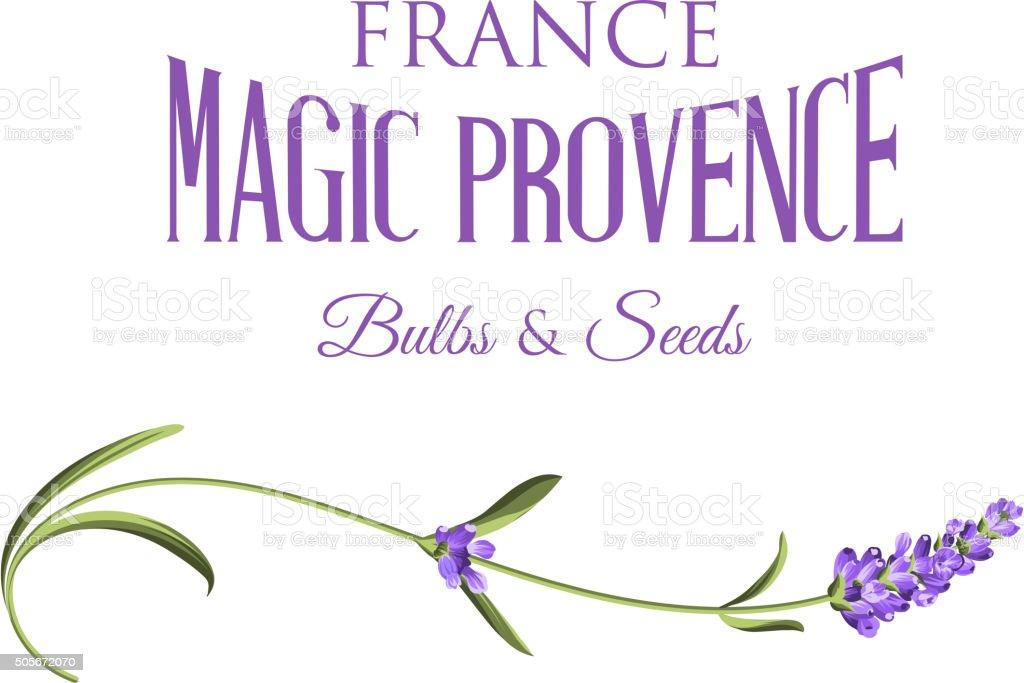 Lavender sign label vector art illustration
