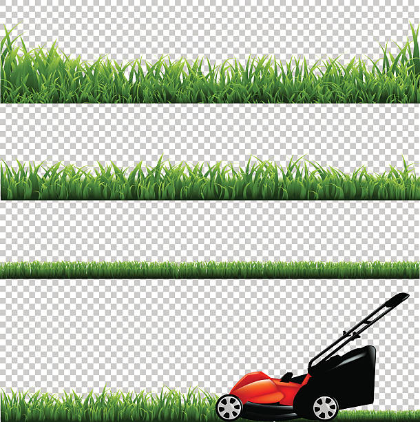 Tractor Mowing Painting : Lawn mower clip art vector images illustrations istock