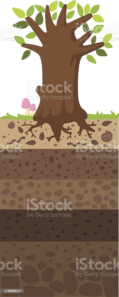 Layer of soil beneath the tree vector art illustration