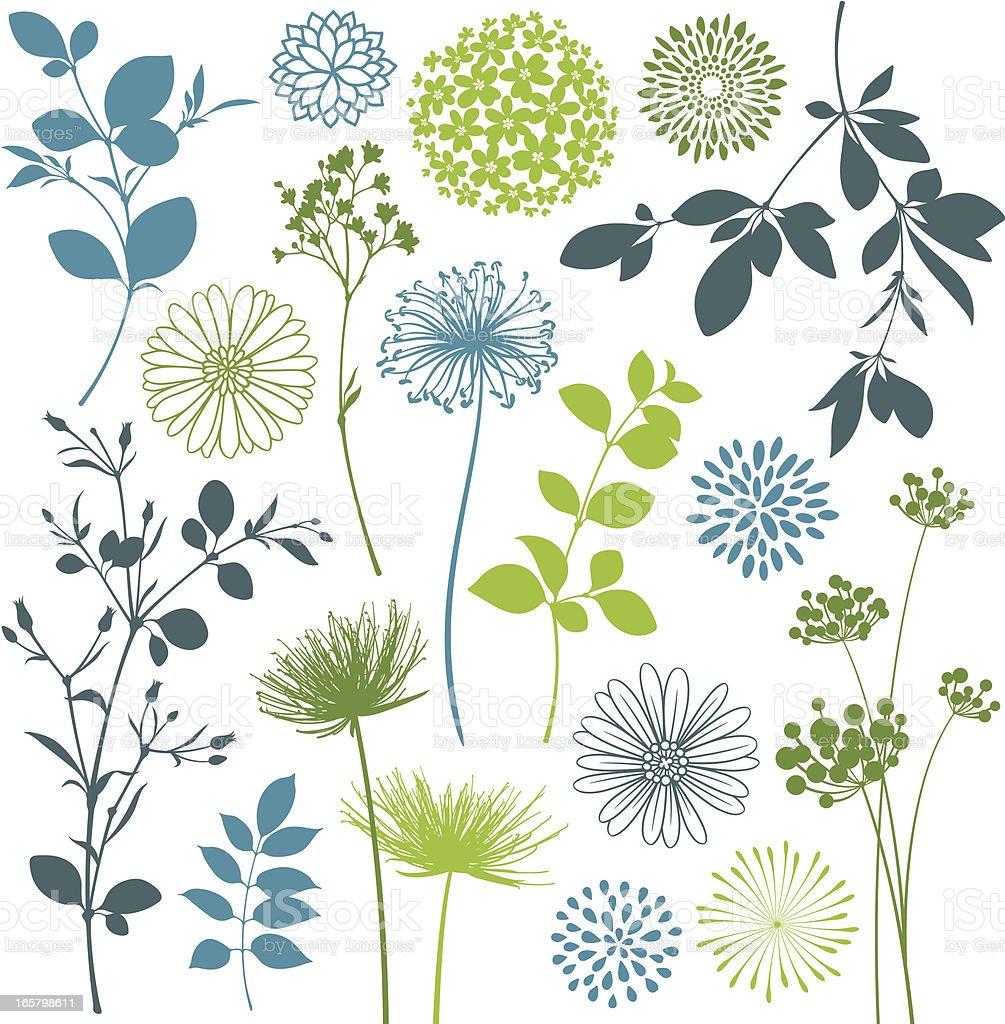 Leaf and Flower Design Elements vector art illustration