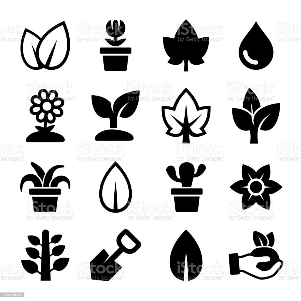 Leaf and Plants Icons Set royalty-free stock vector art
