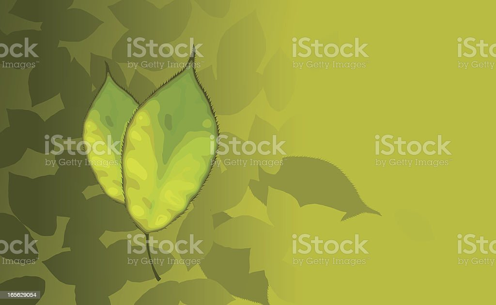 Leaf Design royalty-free stock vector art