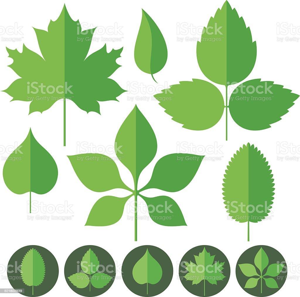 Leaf. Icon Set vector art illustration