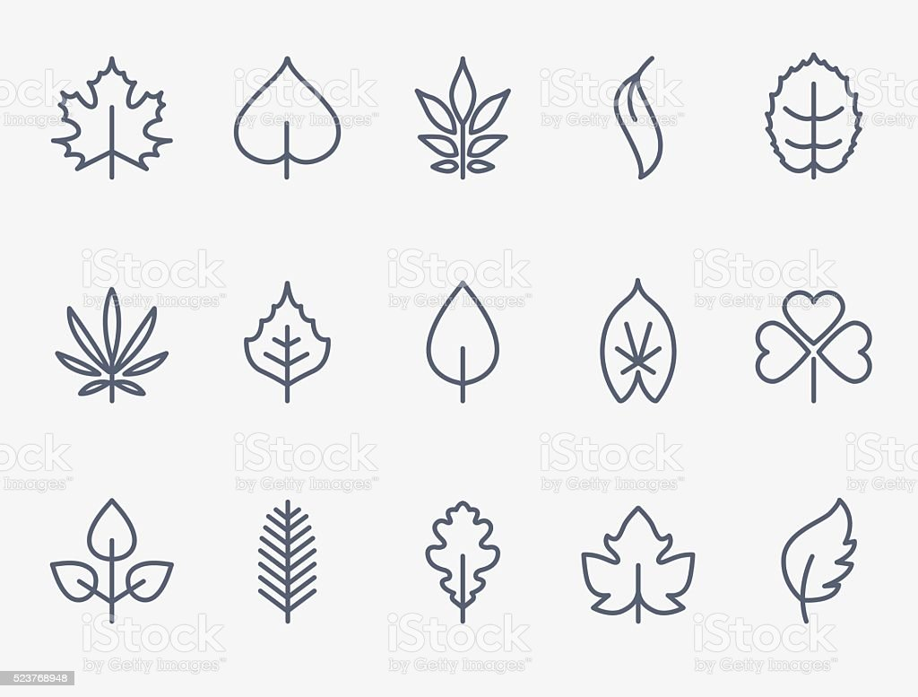 Leaf icons vector art illustration