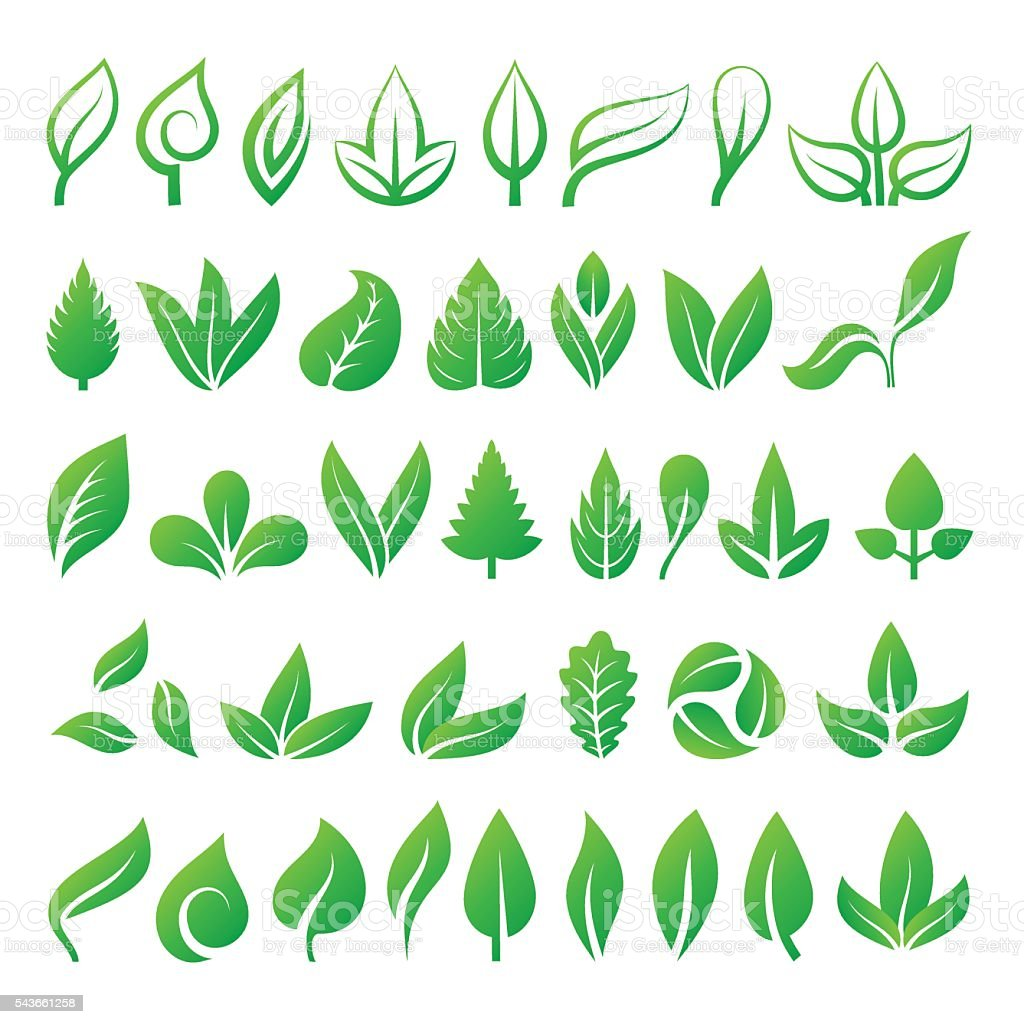 Leaf icons vector illustration. vector art illustration