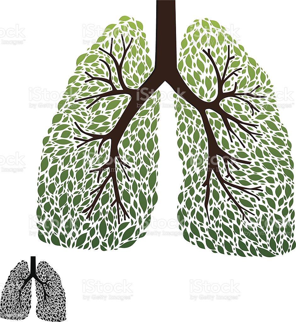 Leaf Lung vector art illustration
