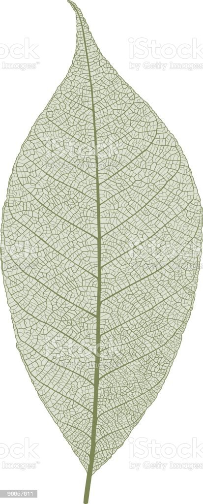 Leaf macro vector art illustration