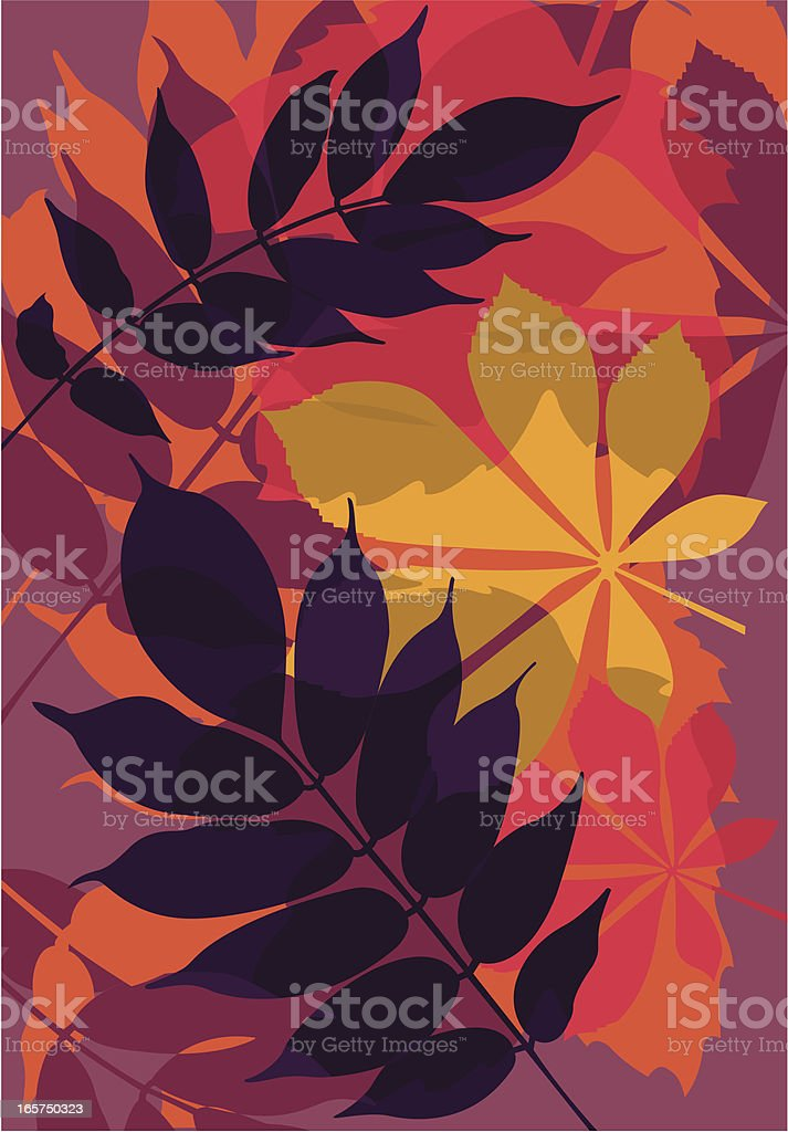 Leaf mix royalty-free stock vector art