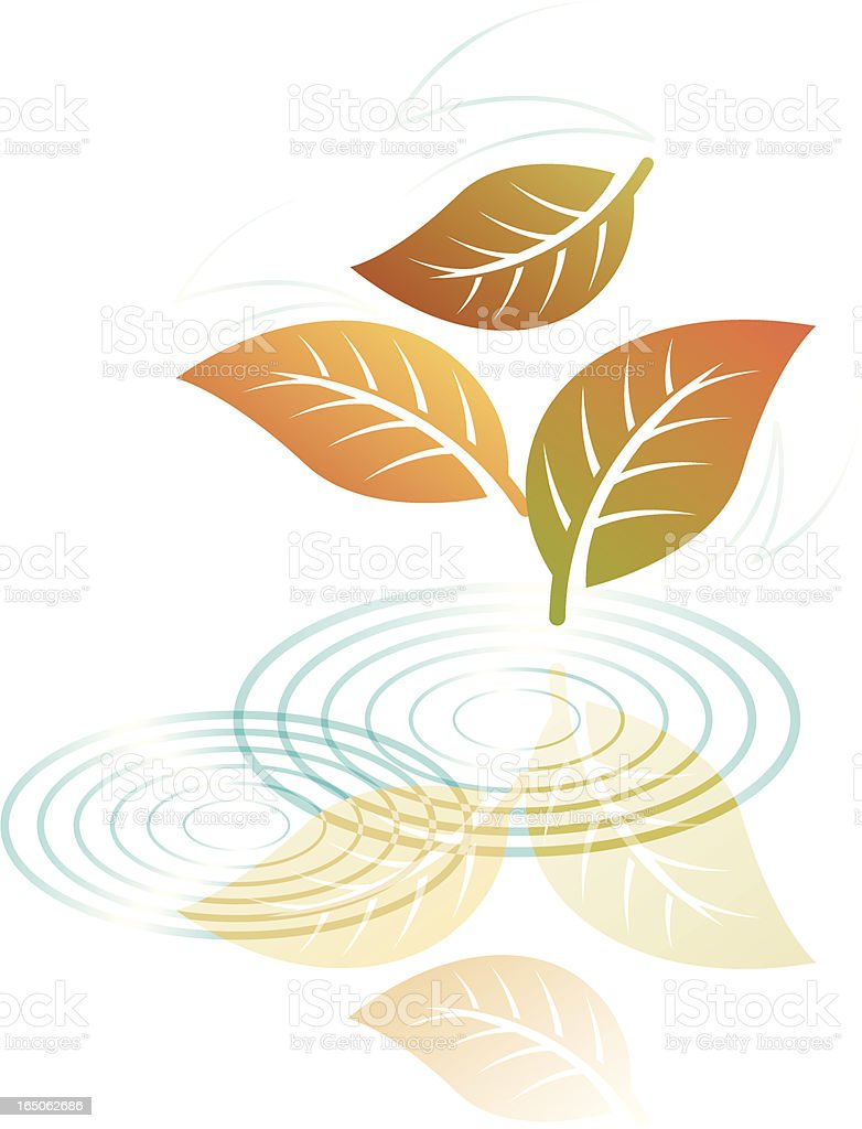 Leaf reflections two. royalty-free stock vector art