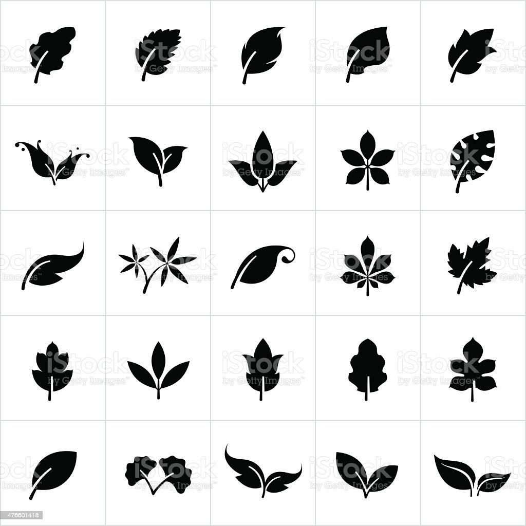 Leaf Set vector art illustration