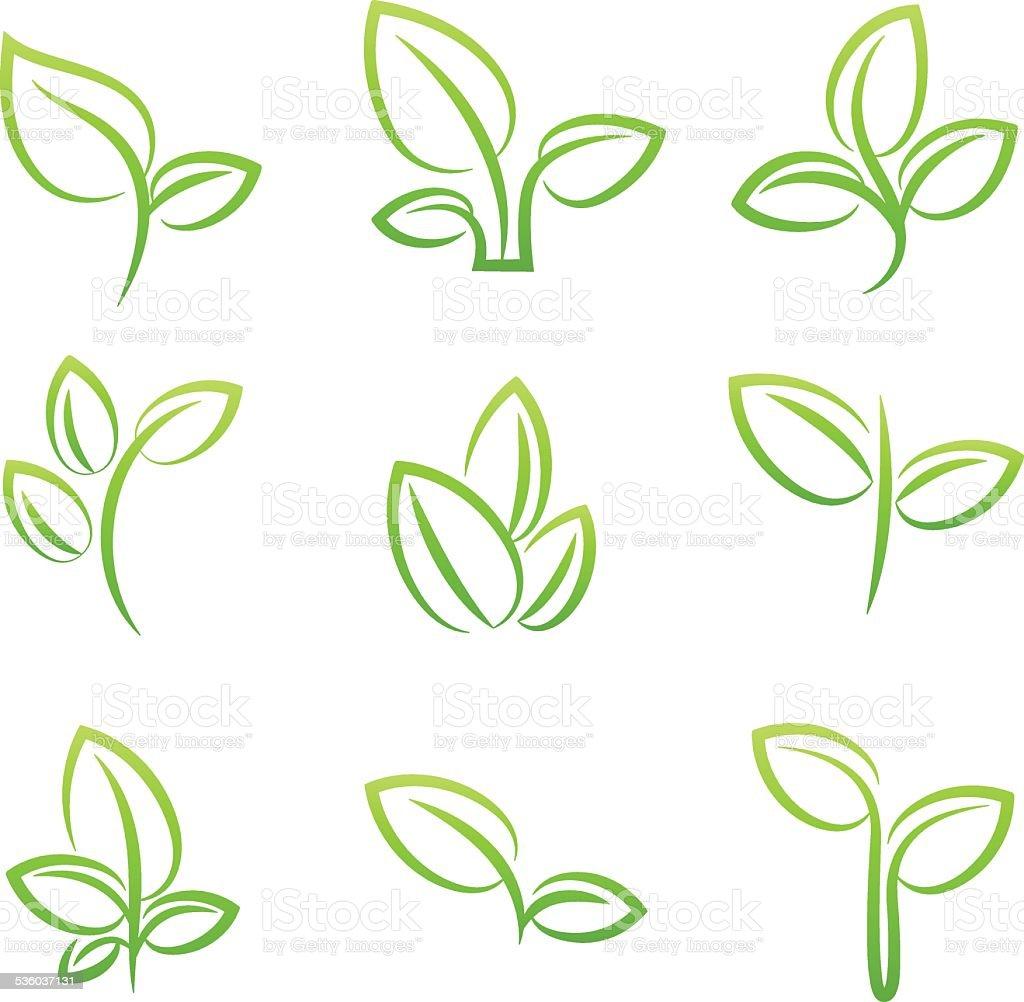 simbol de folhas verdes, conjunto de elementos de design vetor e ilustração royalty-free royalty-free