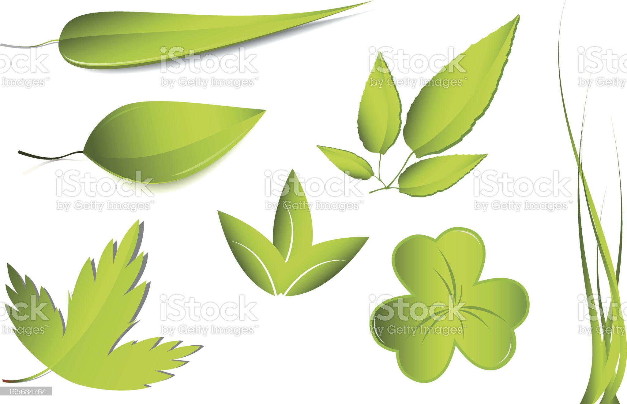 leaf royalty-free stock vector art