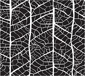 Leaf veins seamless texture pattern