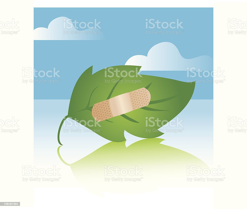 Leaf with Bandage royalty-free stock vector art