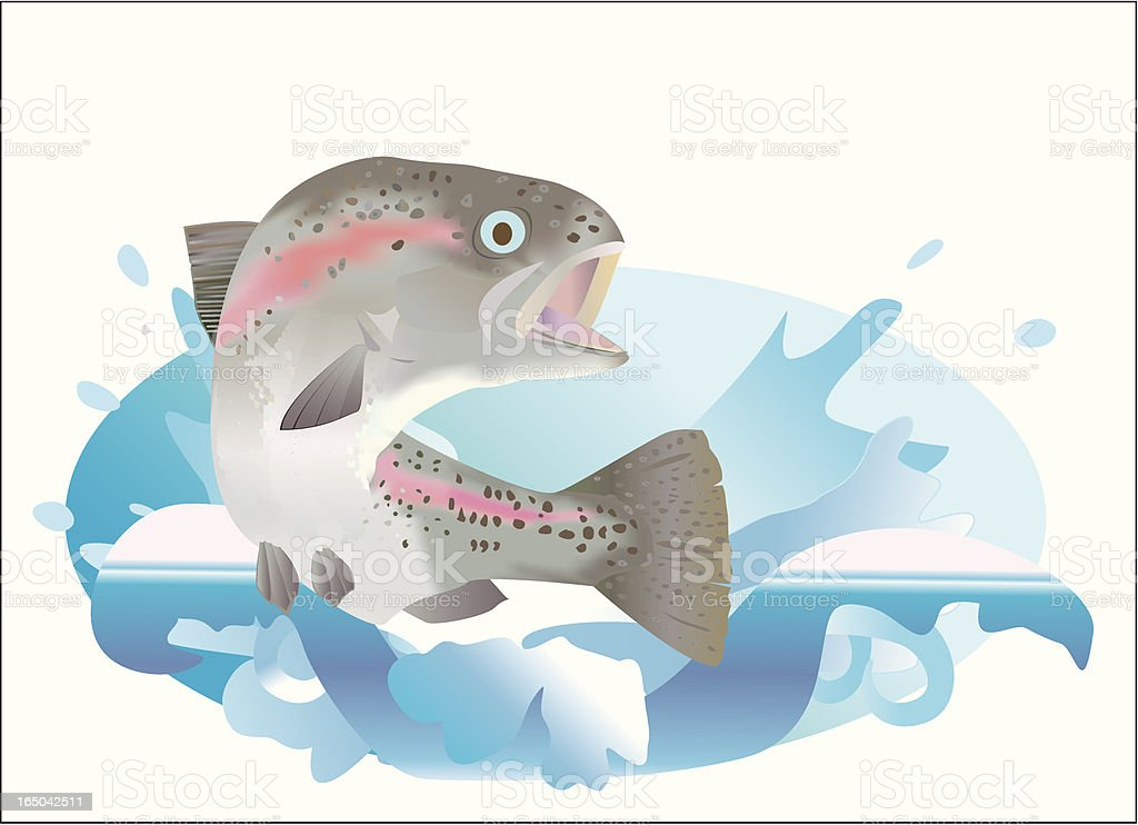 leaping trout royalty-free stock vector art