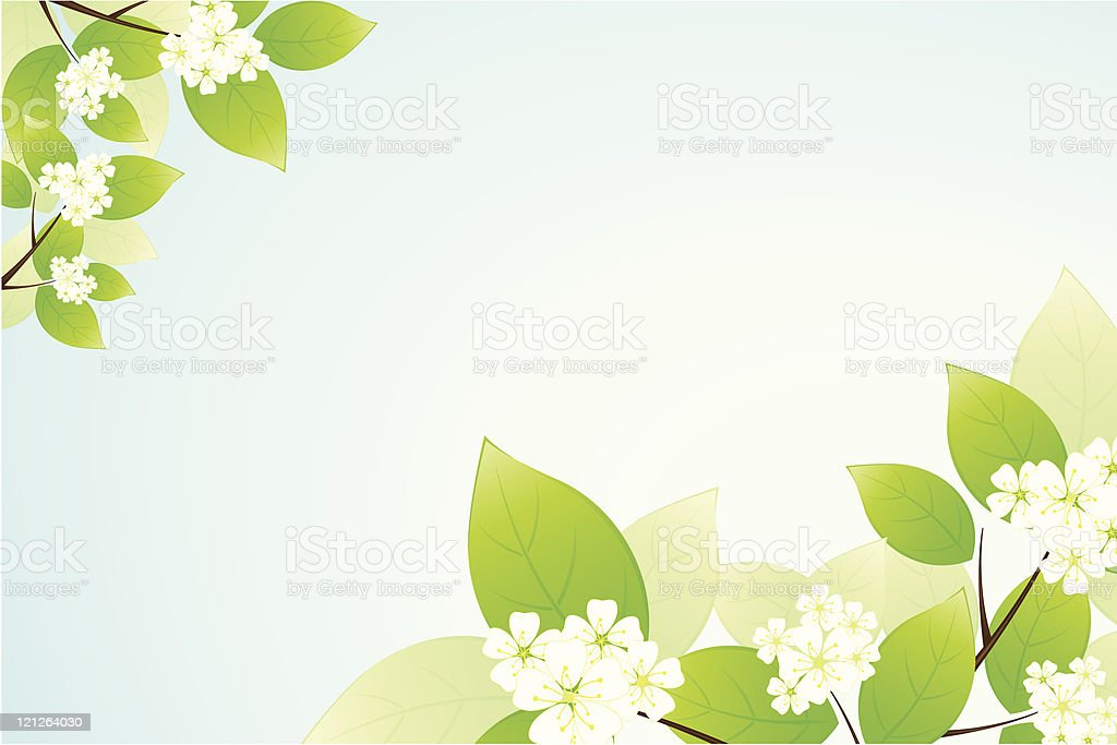 Leaves and flowers royalty-free stock vector art