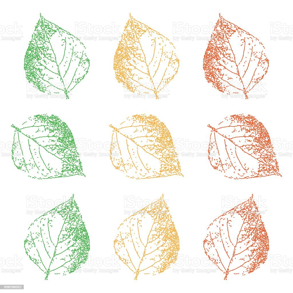 Leaves and foliage. Leaf set. Graphic drawing. Vector illustration. vector art illustration