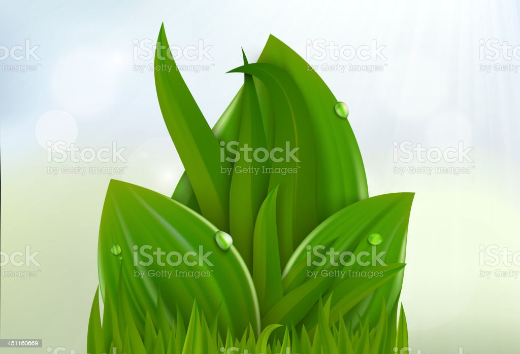leaves and grass royalty-free stock vector art
