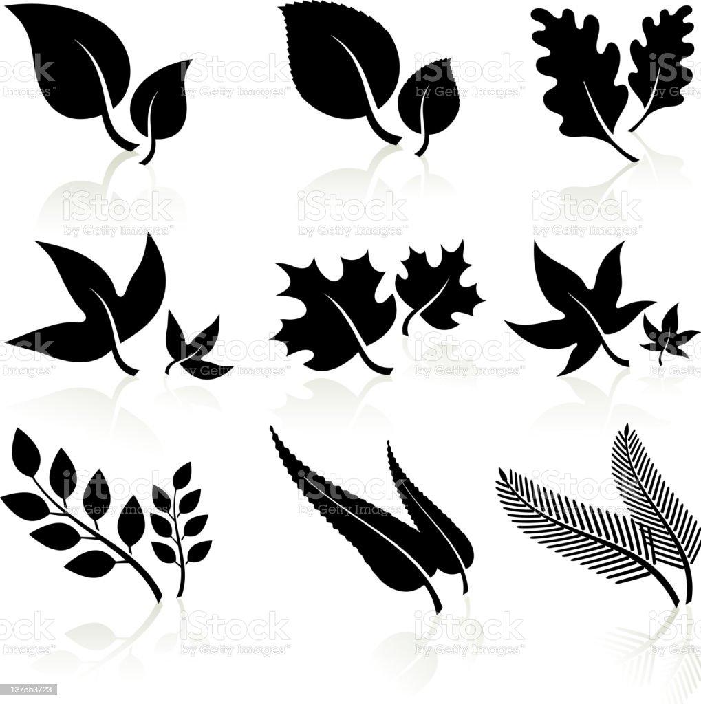leaves black and white vector art illustration