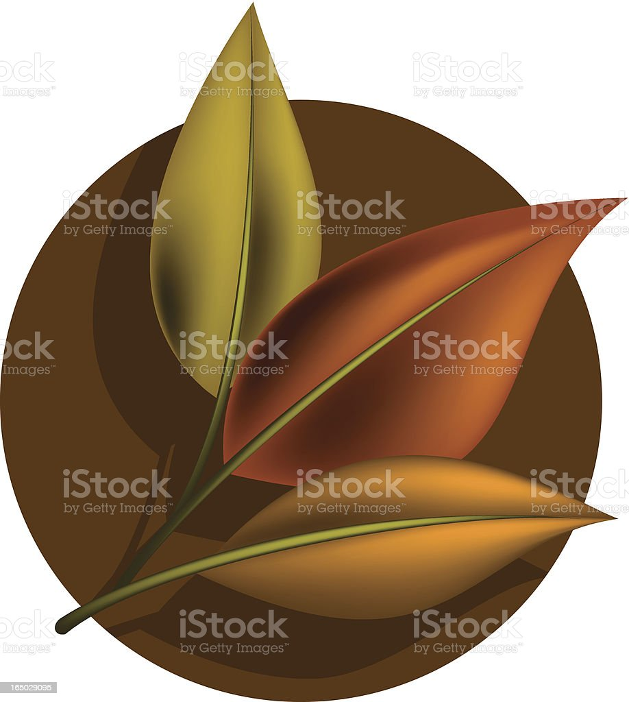 leaves fall royalty-free stock vector art