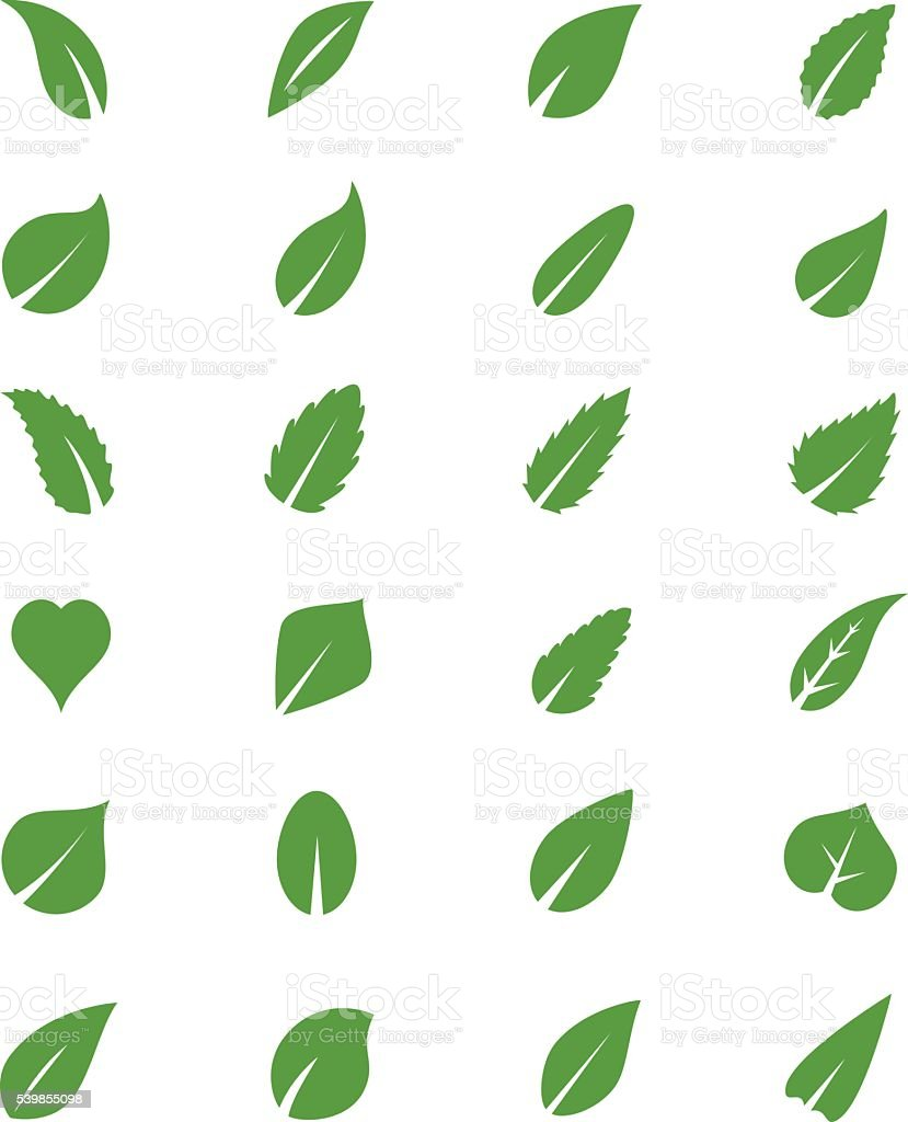 Leaves icons vector art illustration