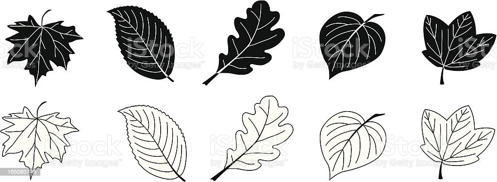 Leaves in Black and White royalty-free stock vector art