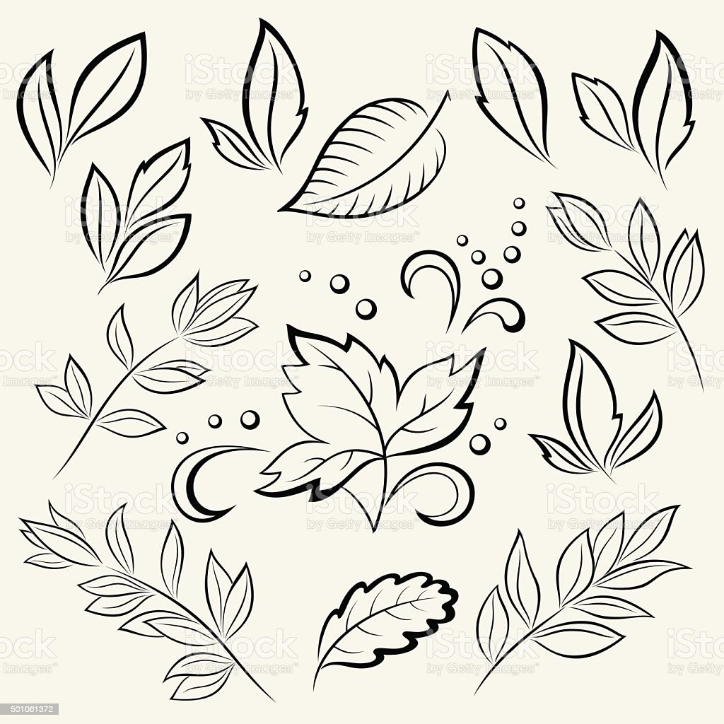 Leaves of plants, silhouettes, set vector art illustration