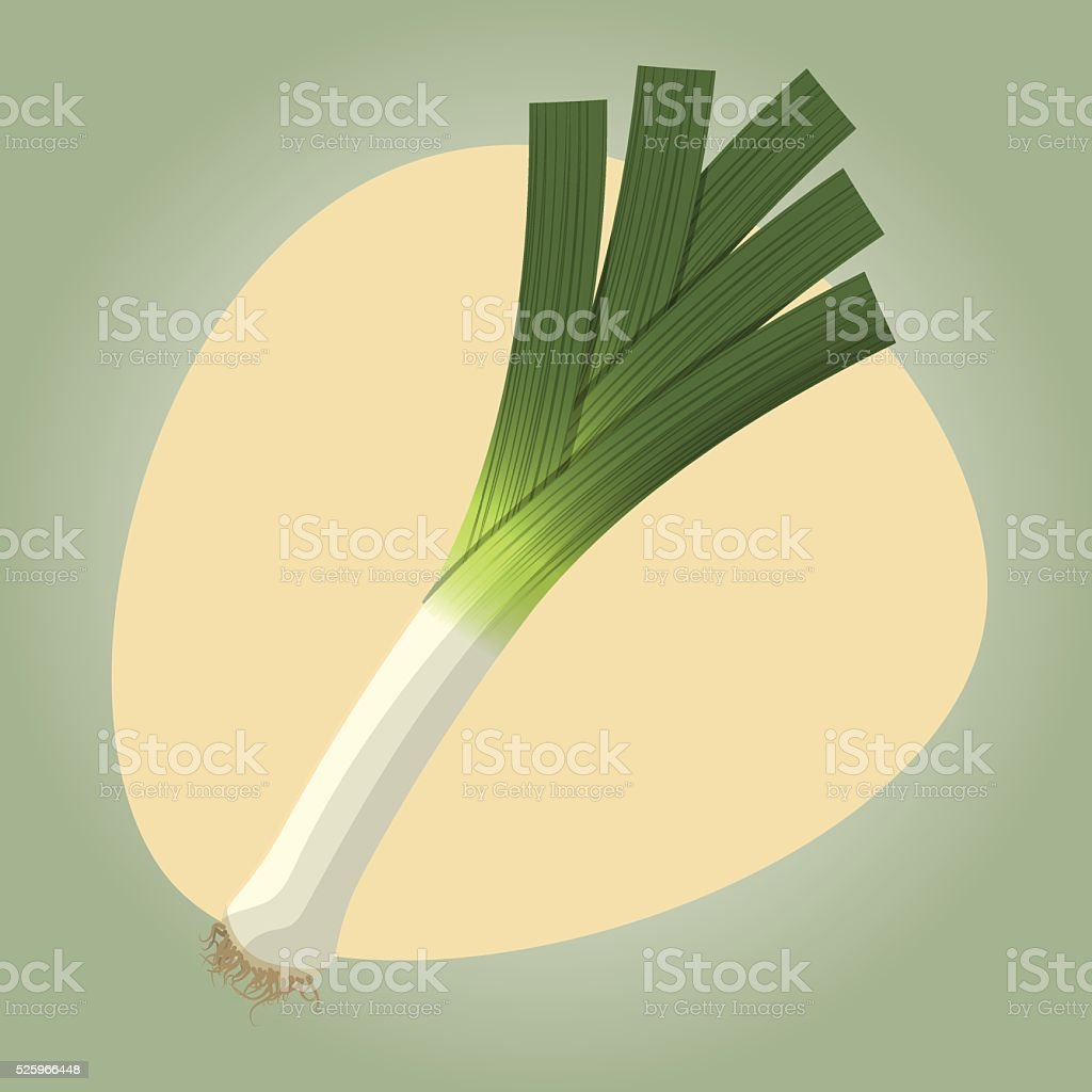 Leek colorful icon vector art illustration