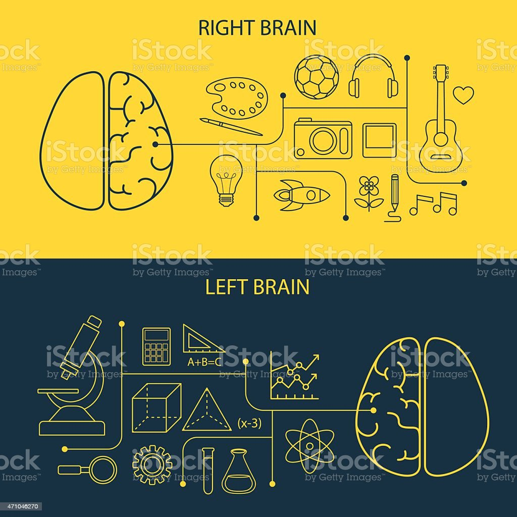 left and right brain functions concept vector art illustration