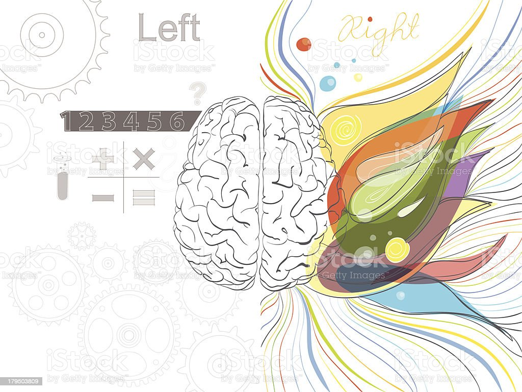 Left & right brain functions vector art illustration