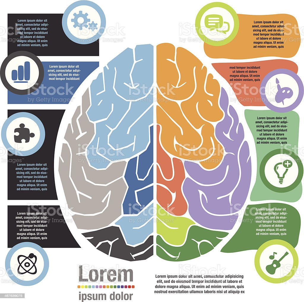 Left Right Brain System vector art illustration