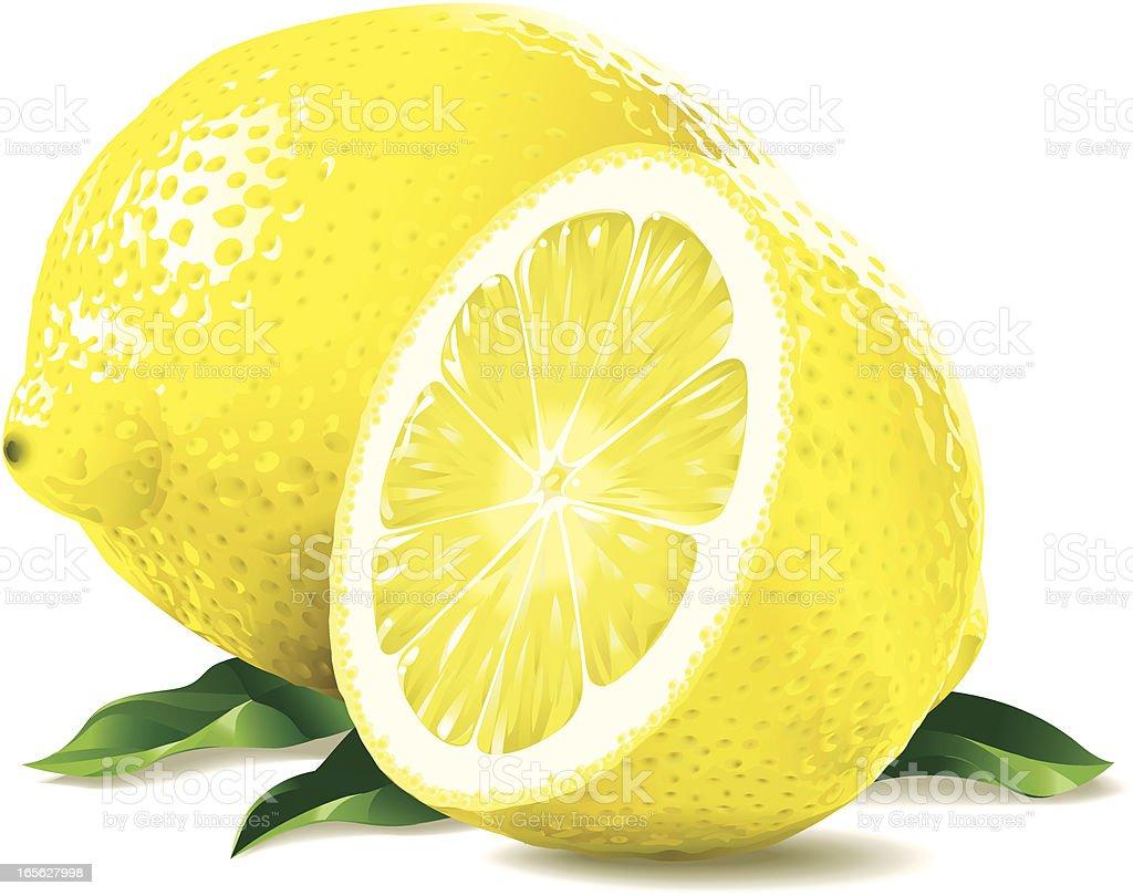 Lemon and a half vector art illustration