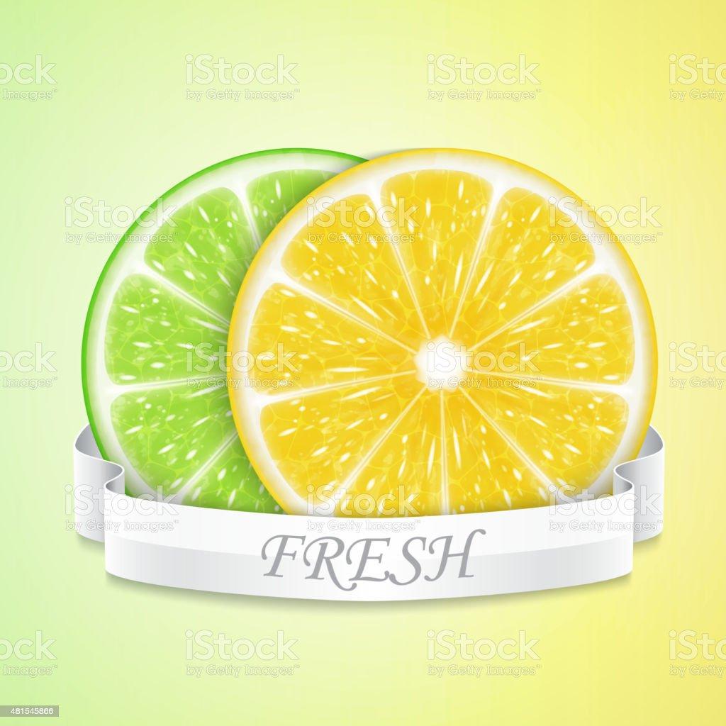 Lemon and lime slices vector art illustration