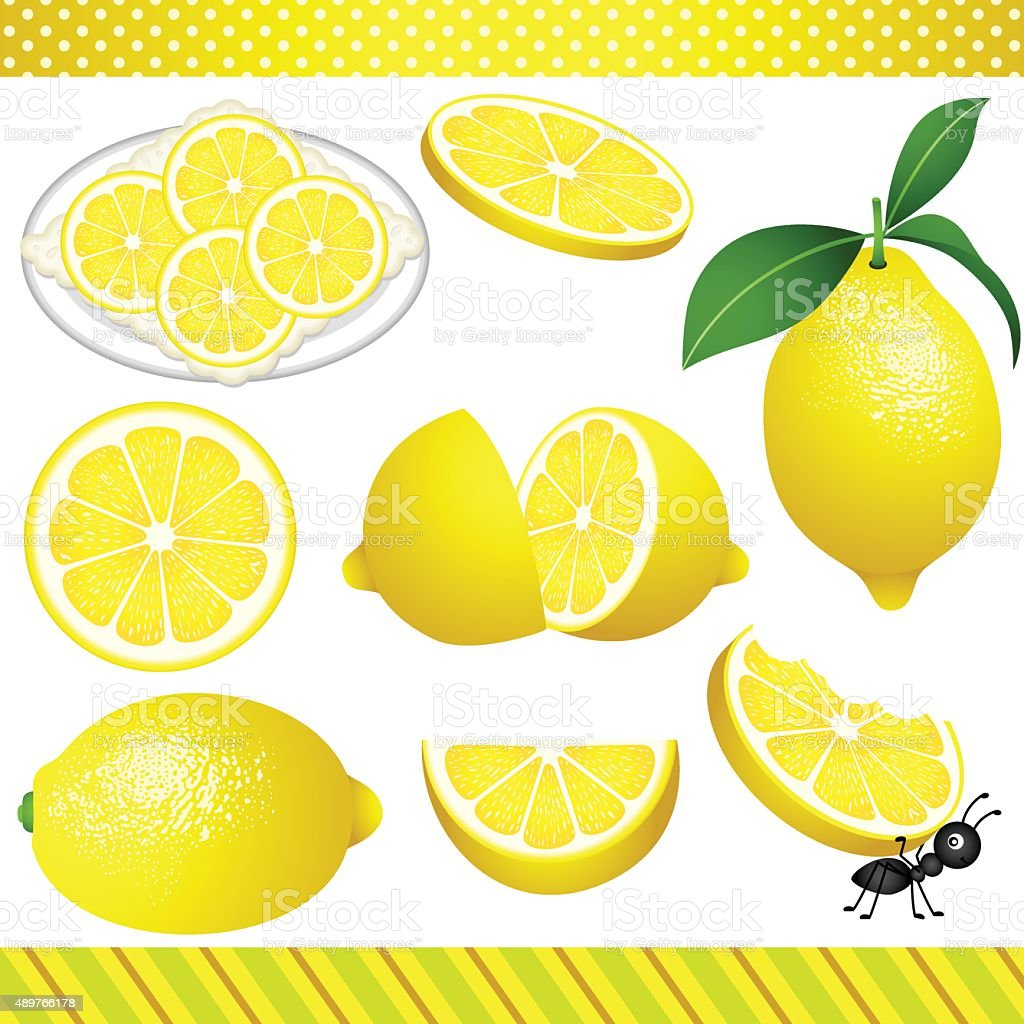 Lemon Digital Clipart vector art illustration