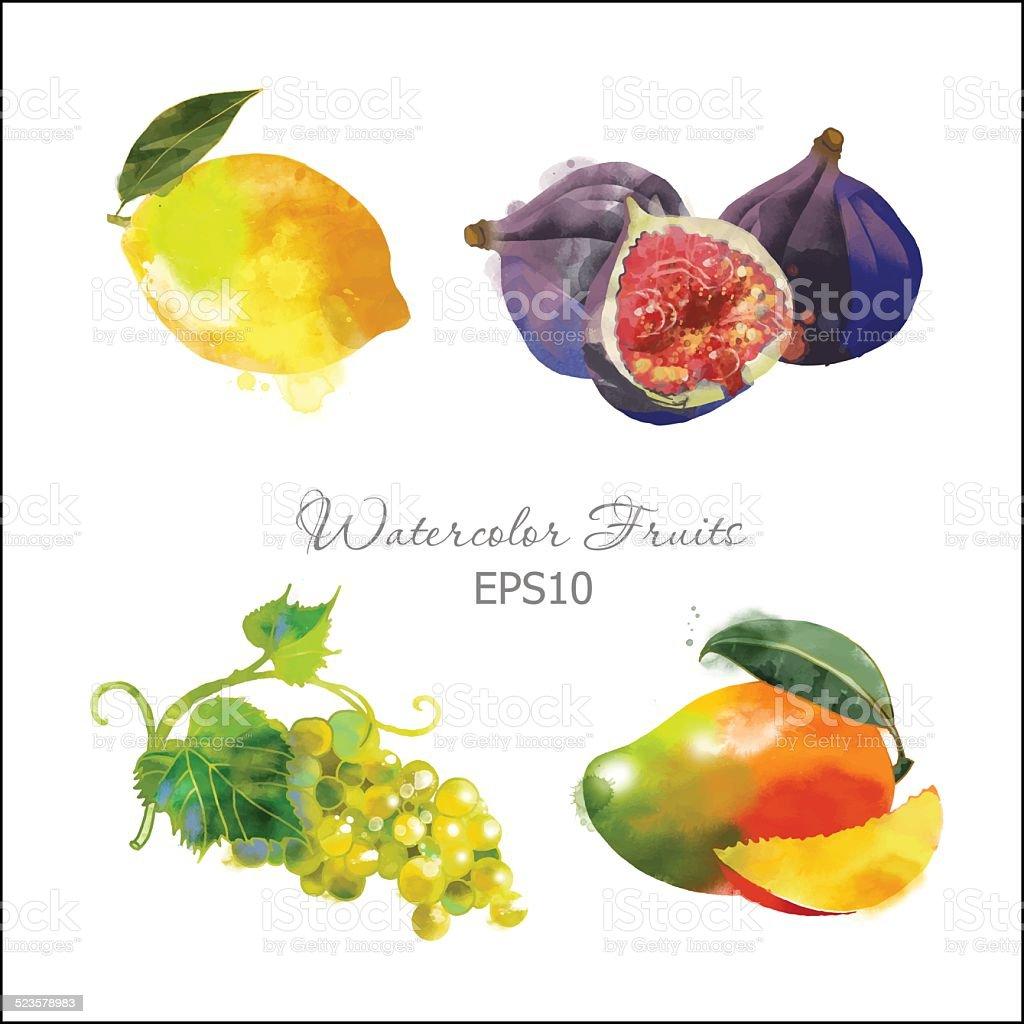 lemon, figs ,grape,mango vector art illustration