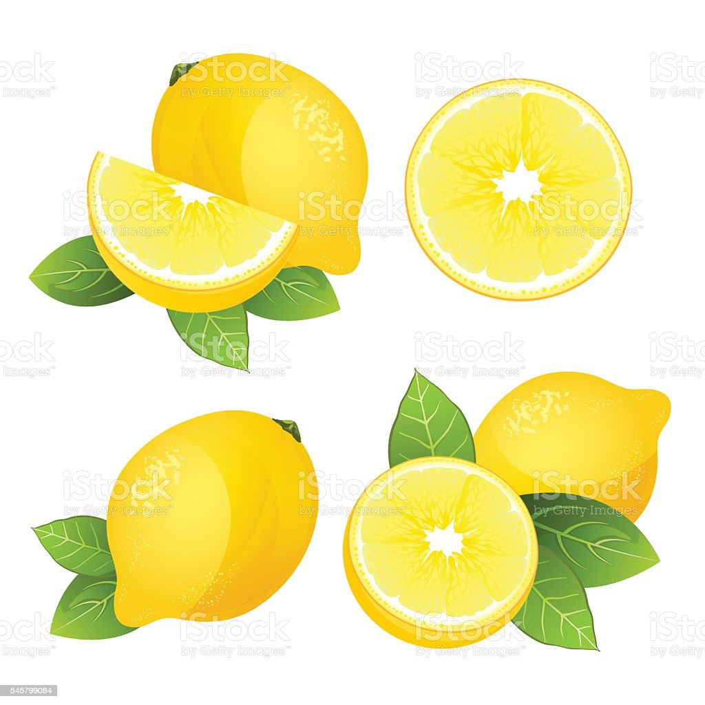 Lemon fruit slice set. Realistic citrus with leaves vector isolated vector art illustration